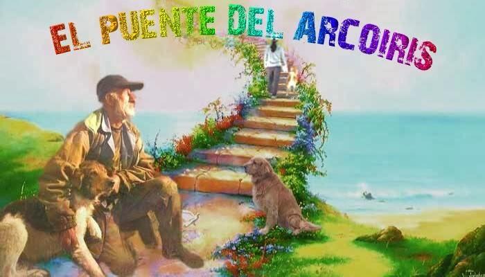 EL PUENTE DEL ARCO IRIS 00 X