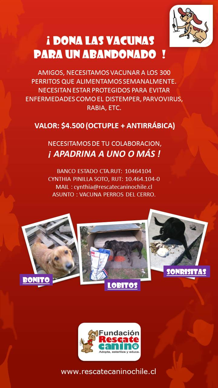 afiche vacunas cerro jpg