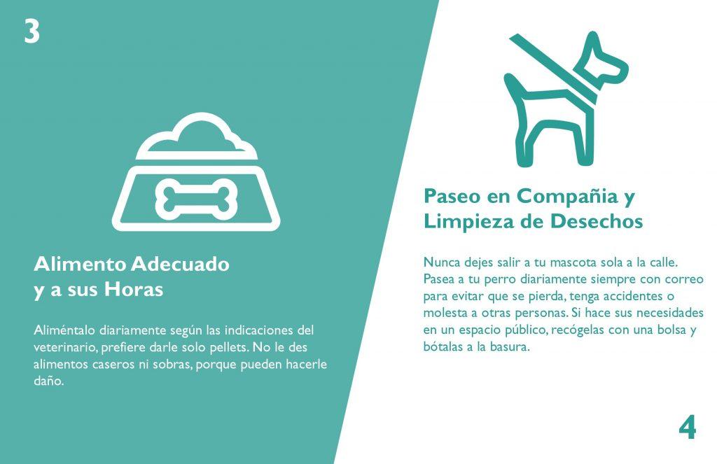 infografia-tenencia-responsable-arreglado-3-003
